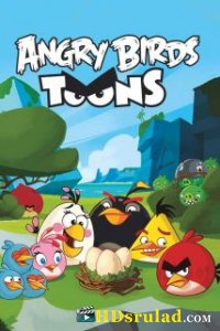 Angry Birds ანიმაცია / ANGRY BIRDS TOONS