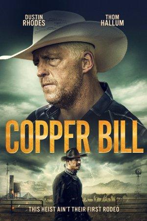 სპილენძის ბანკნოტი / Copper Bill / spilenzis banknoti
