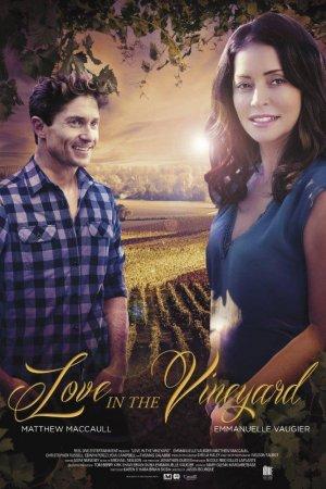 სიყვარული ვენახში / Love in the Vineyard