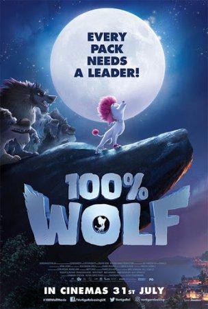 100% მგელი / 100% Wolf