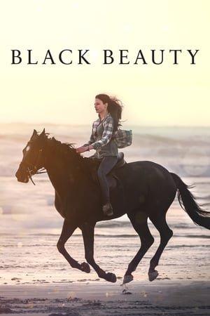 შავი სილამაზე / Black Beauty