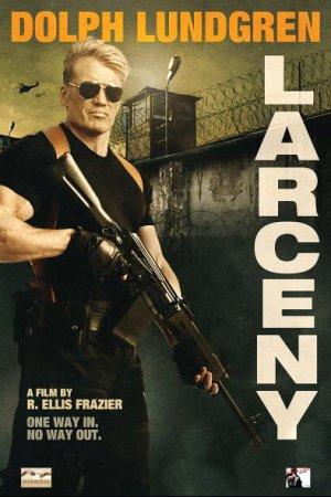 ქურდობა / Larceny