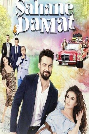ბრწყინვალე სიძე / Şahane Damat