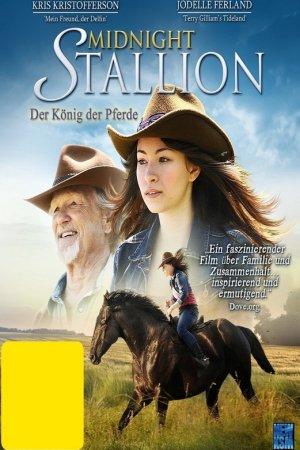 შუაღამის ულაყი / Midnight Stallion